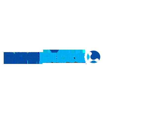 posdion-flat